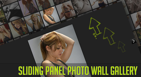 jQueryフルスクリーン画像ギャラリー「Sliding Panel Photo Wall Gallery with jQuery」