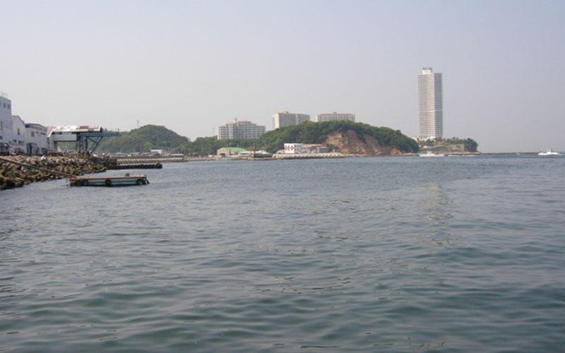 師崎漁港、大井漁港、11月のアジング釣行。