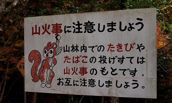 美濃 大矢田神社の紅葉